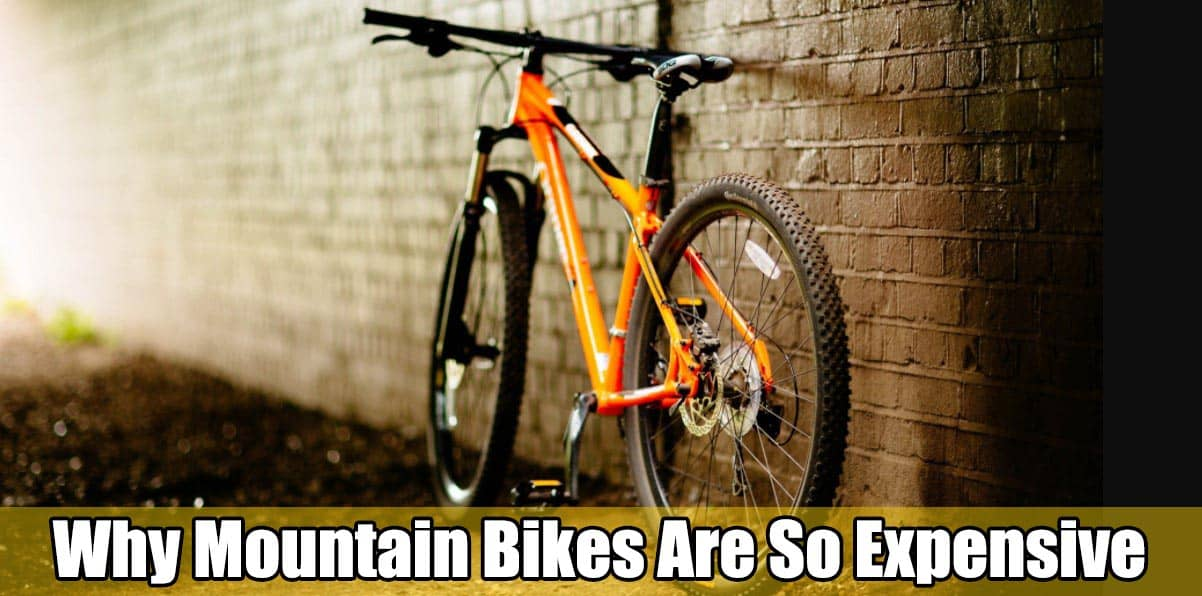 Why Mountain Bikes Are So Expensive