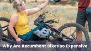 Why Are Recumbent Bikes so Expensive