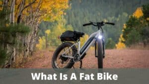 What Is A Fat Bike
